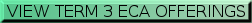 Green button that says VIEW TERM 3 ECA OFFERINGS